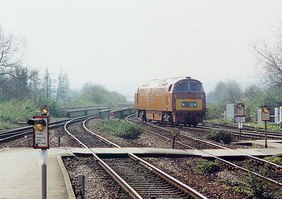 D1015 at Exeter St Davids on 15th March 2003