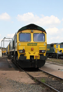 66 503 at Crewe Basford Hall Yard on 22nd May 2010
