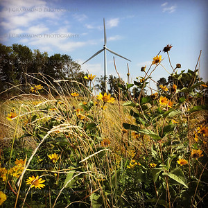 WindmillUMM