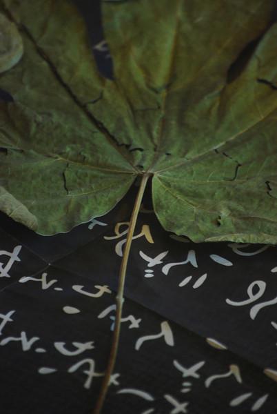 """AFTERMATH"": Art Exhibition, September - November 2010"