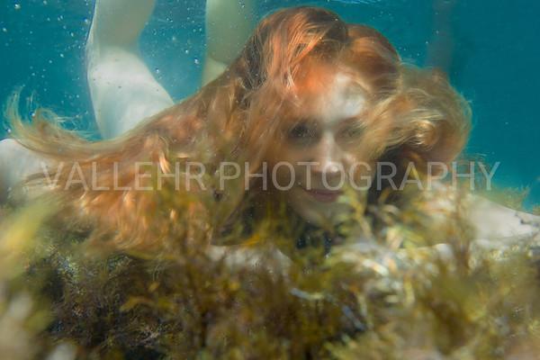 Seaweeding
