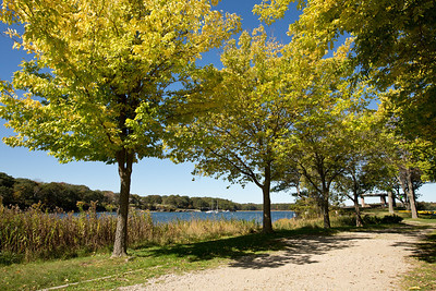 UNE Biddeford Campus Fall Landscape photos.  Biddeford, ME 10.8.13
