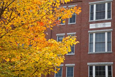 UNE Portland Campus Fall Landscape photos.  Portland, ME 10.15.13
