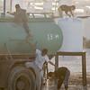 Jordan. Water truck in Za'atari camp.