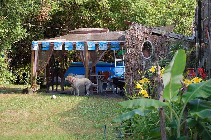 Tiki Bar and  pool area.