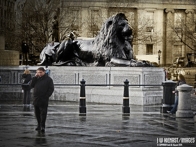 Trafalger Square; raining, cold, big lion....hope the guy remembers the shopping list from his wife.