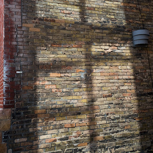 Close-up of brick wall, Minneapolis, Hennepin County, Minnesota, USA
