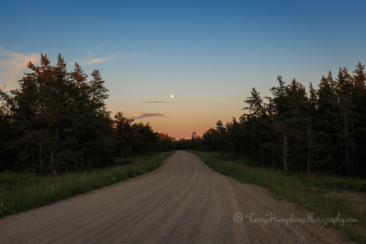 Driving Over to See the Moon