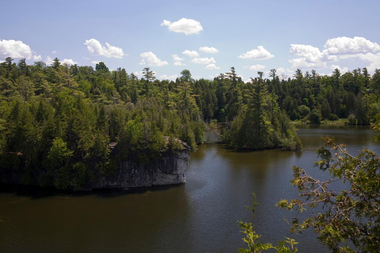 Rockwood Conservation Area 2009   0