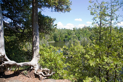 Rockwood Conservation Area 2009     (3)