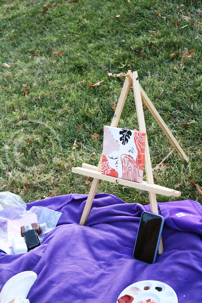 """Students came together at the Anderson Lawn to participate in an event called """"Sip and Paint"""". Students sat on the lawn and painted while enjoying a beverage. The event was put together by the Student Union Council. Friday, October 9, 2020. (Jordan Henington   Collegian Media Group)"""