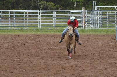 UP Cowboy Sunday speed 120