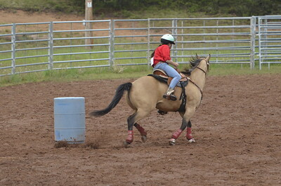 UP Cowboy Sunday speed 109