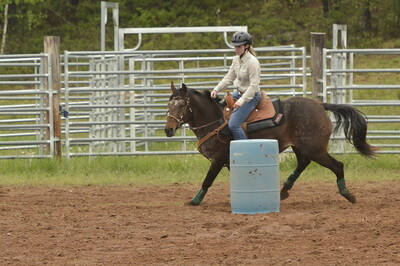 UP Cowboy Sunday speed 226