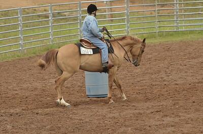 UP Cowboy Sunday speed 235
