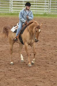 UP Cowboy Sunday speed 237