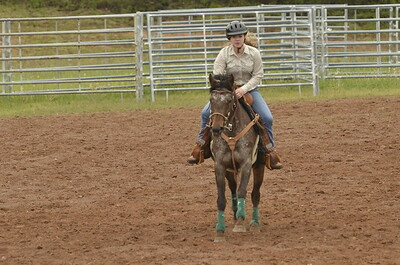 UP Cowboy Sunday speed 229