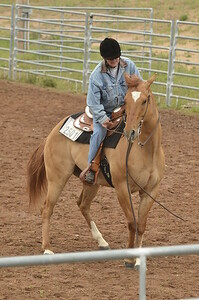 UP Cowboy Sunday speed 242