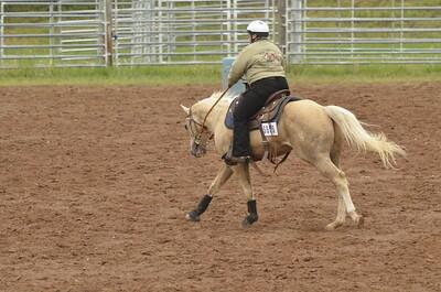 UP Cowboy Sunday speed 264