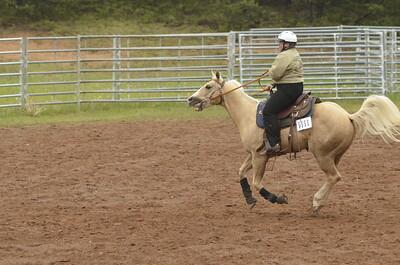 UP Cowboy Sunday speed 265