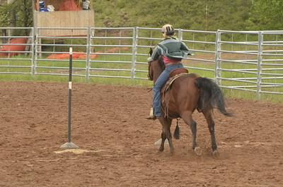 UP Cowboy Sunday speed 534