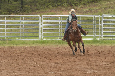 UP Cowboy Sunday speed 699