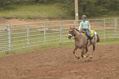 UP Cowboy Sunday speed 667