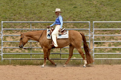 Senior Horse Western Pleasure