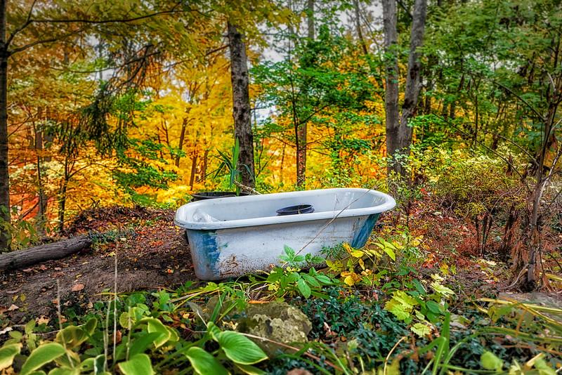 Bathtub Autumn