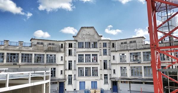 Le lycée des pigeons (08/2017)
