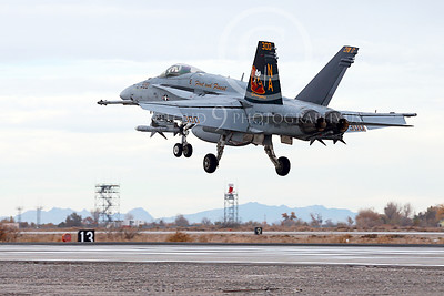CAG 00140 A colorful McDonnell Douglas F-18C Hornet USN 164257 VFA-113 STINGERS USS Carl Vinson with missiles lands at NAS Fallon 11-2013 military airplane picture by Peter J Mancus