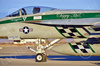 Boeing F-18E-USN 00205 Close up of markings on a static Boeing F-18E Super Hornet USN 166901 VFA-195 DAMBUSTERS commanding officer's airplane CHIPPY HO USS George Washington NF code at NAS Fallon 2-2015 military airplane picture by Peter J Mancus