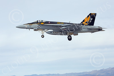 Boeing F-18E-USN 00192 A Boeing F-18E Super Hornet USN 166859 VFA-115 EAGLES commanding officer's airplane USS George Washington NF code landing at NAS Fallon 2-2015 military airplane picture by Peter J Mancus