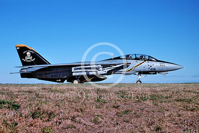 F-14USN 00953 A Grumman F-14 Tomcat USN 163217 VF-103 JOLLY ROGERS USS John F Kennedy taxis at NAS Oceana 1-2005, by David F Brown