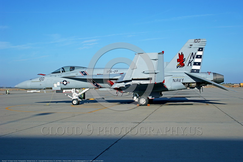 F-18E-USN-VFA-22 0001  A static Boeing F-18E Super Hornet USN jet fighter VFA-22 FIGHTING REDHAWKS WARHAWKS commanding officer's airplane USS Ronald Reagan NAS Lemoore 10-2005 military airplane picture by Michael Grove, Sr      DONEwt