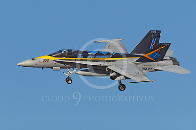 CAG 00014 A colorful US Navy McDonnell Douglas F-18C Hornet, VFA-146 BLUE DIAMONDS CAG Bird assigned to the aircraft carrier USS Ronald Reagan, by Peter J Mancus