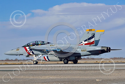 Boeing F-18F-USN 00315 A Boeing F-18F Super Hornet USN VFA-2 BOUNTY HUNTERS CAG NE code commanding officer's airplane USS Ronald Reagan on runway at NAS Fallon 2-2015 military airplane picture by Peter J Mancus