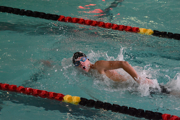2015-02-07 US Swimming at DISC Championships