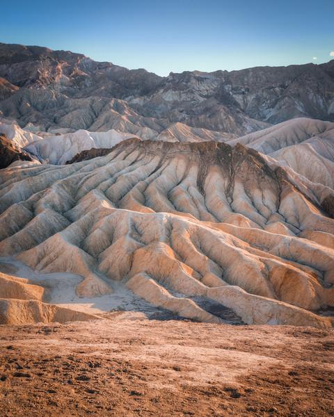 Ripples in the Desert