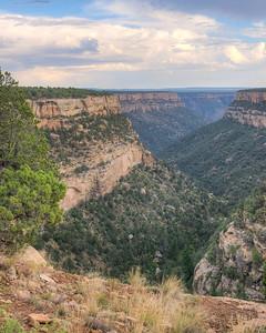 Mesa Verde Canyon