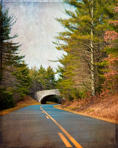 Blue Ridge Parkway at Linville