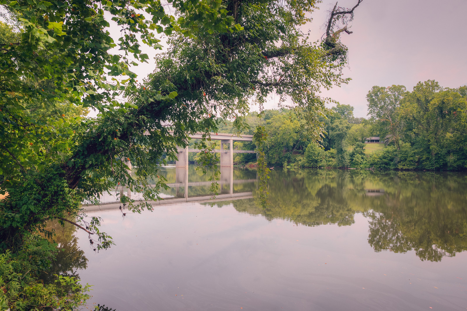 Framing the James River with Nature