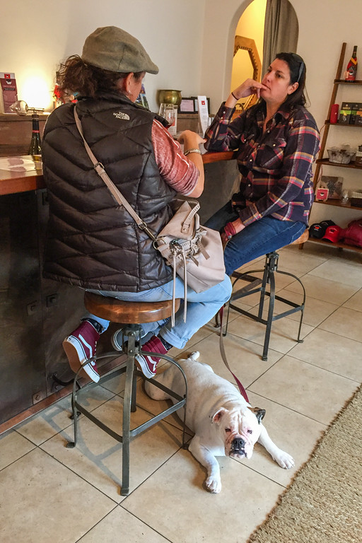 Dog-friendly Wine tasting on the Carmel Wine Walk: Dawns Dreams