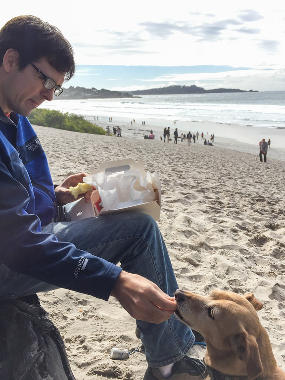 Picnic on the Carmel Beach : Boxed lunch from Carmel's 5th Avenue Deli