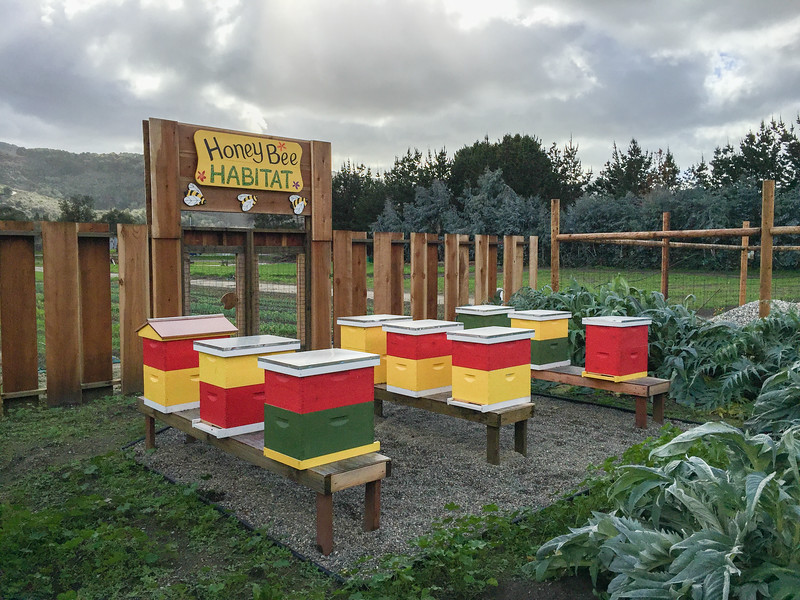 The Honey Bee habitat at Earthbound Farms, Carmel Valley, California