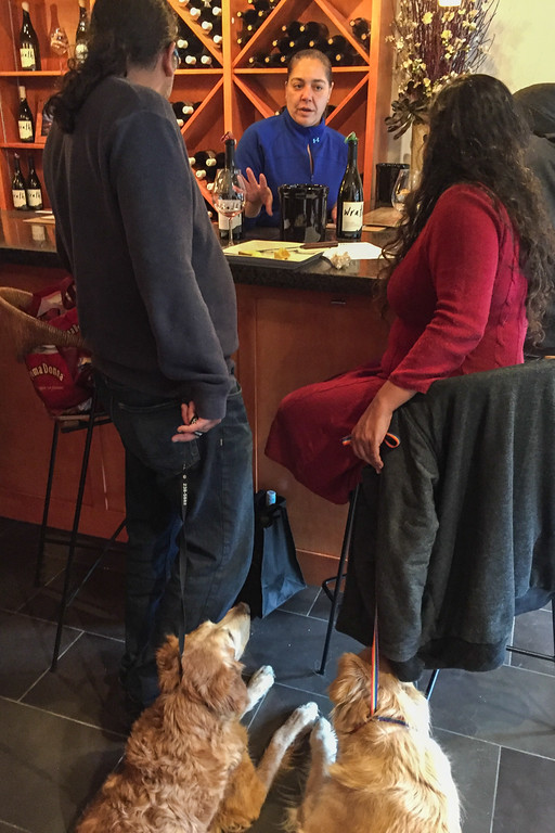 Dog-friendly Wine tasting on the Carmel Wine Walk: Wrath Winery