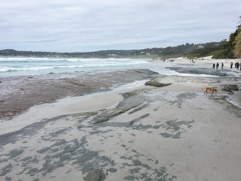Beach erosion at Carmel City Beach - Things to do in Carmel, California