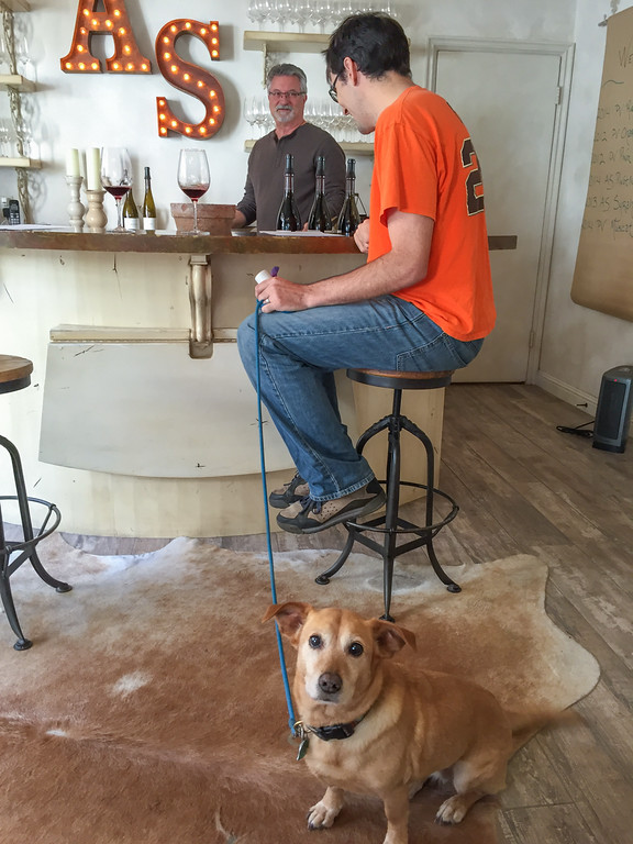 Dog-friendly Wine tasting on the Carmel Wine Walk: Alexander Smith
