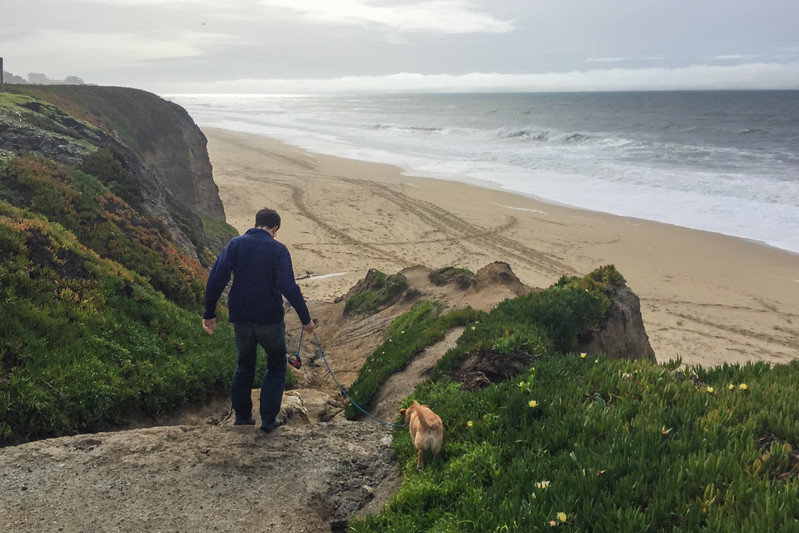 """Dog Day"" Hike on the Beach in Half Moon Bay, CA"