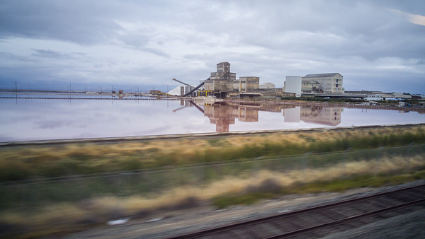 Alviso Salt factory |Amtrak Capitol Corridor Train